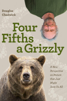 Four-Fifths A Grizzly